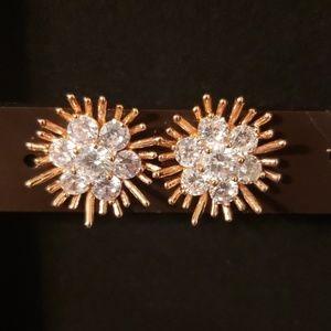 2/$20 Rose Gold & CZ Flower Earrings